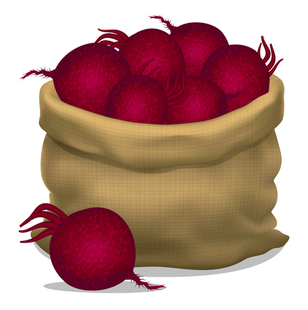beets: Illustration of a sack of beets on a white background. Vector icon