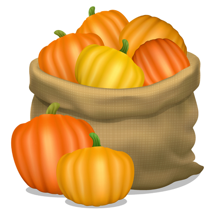 burlap sack: Illustration of a sack of pumpkins on a white background. Vector icon