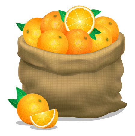Illustration of a sack of oranges on a white background. Vector icon Illustration