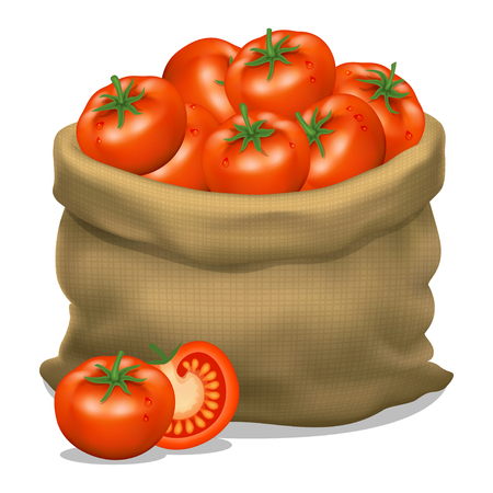 Illustration of a sack of tomatoes on a white background. Vector icon