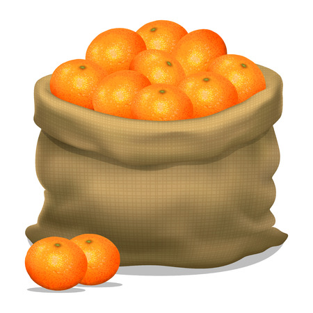 Illustration of a sack of mandarins on a white background. Vector icon Illustration