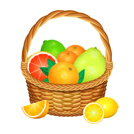 fruits in a basket: Wooden wicker basket with fruits isolated on a white background. Vector illustration