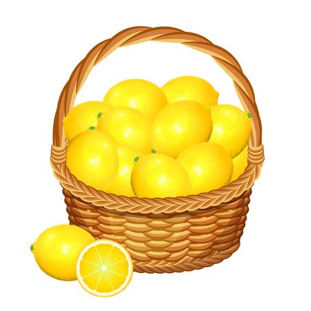 picking fruit: Basket with lemons fruits. Vector illustration