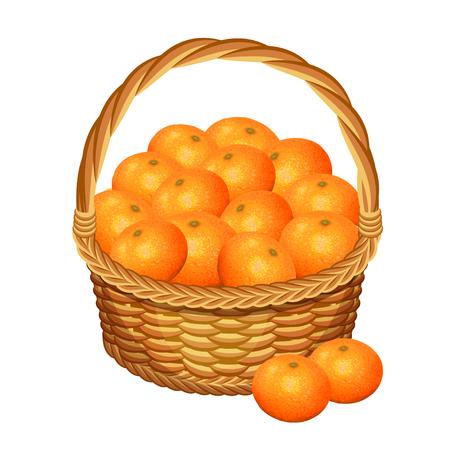 Basket with tangerine fruits. Vector illustration Illustration