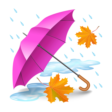 an open space: Pink or purple realistic umbrella with falling orange leaves, raindrops and puddles isolated on white background. Rainy autumn day. Vector illustration