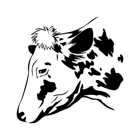 Stylized cow head, cow portrait.