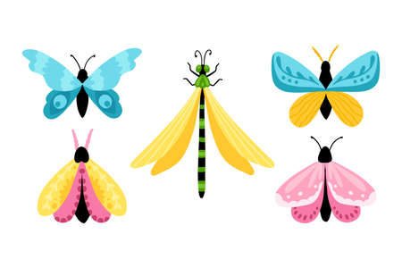Set butterflies. Colorful hand-drawn butterflies and dragonfly in simple cartoon style. Isolated over white background.