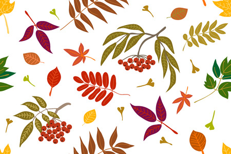 Falling autumn leaves. Seamless panoramic vector pattern with botanical motifs.