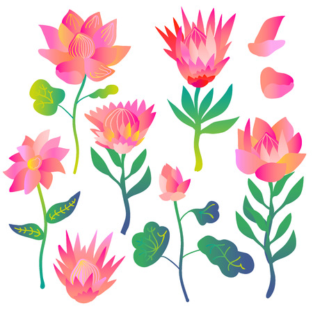 Tropical lotuses with gradient colors. Abstract elements for cards and textile design.