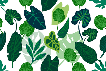 Seamless vector pattern with different palm leaves.