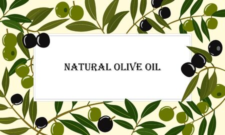 Horizontal banner with olive branches. Çizim