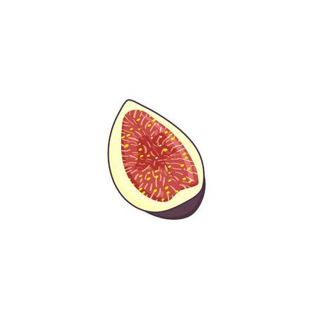 Purple slice fig fruit, isolated on white background.