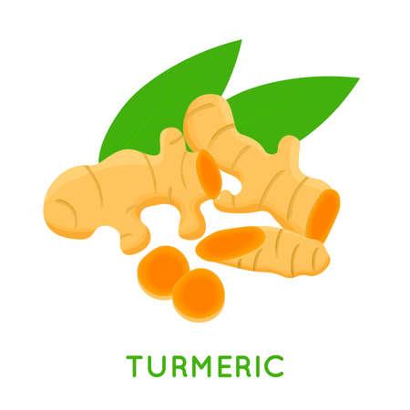 Turmeric root, isolated on white background. Vector illustration. Vektorgrafik