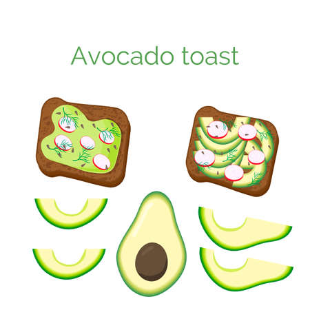 Set avocado toast. Sandwich with bread, avocado, radish, dill and sesame seeds, isolated on white background. Organic healthy food. Vector cartoon illustration.
