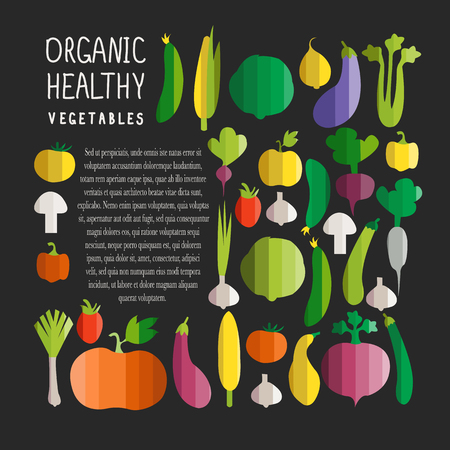 illustration of vegetables in modern flat design style with signature Ilustrace