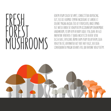 article: illustration of colorful flat design style forest mushrooms with text and signature as a template for your design or article