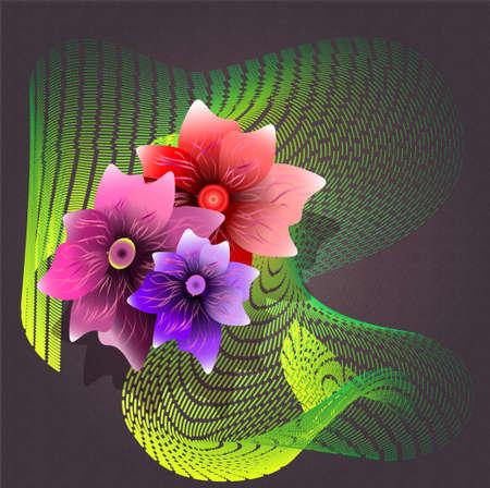 violet flower: red, pink and violet flower on the dark background