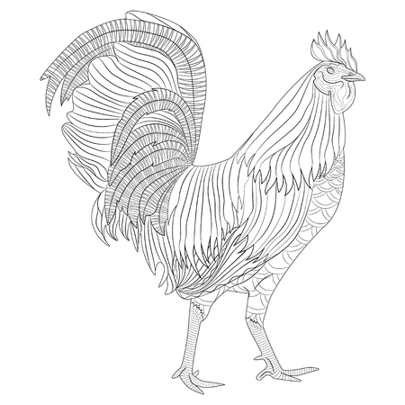 Rooster coloring book for adult, Chicken Chinese zodiac symbol of the new year. Vector illustration isolated on white. Design for t-shirt print, greeting card, calendar.