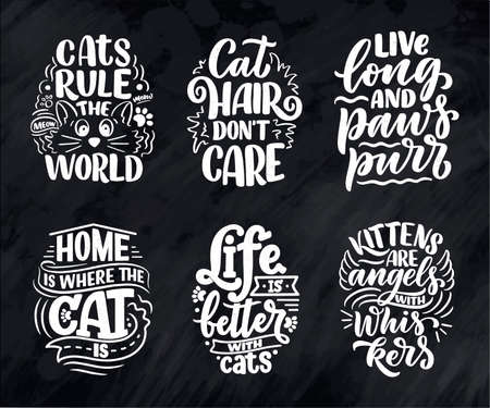Set with funny lettering quotes about cats for print in hand drawn style. Creative typography slogans design for posters. Cool vector illustration.