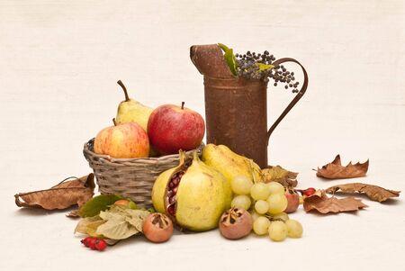 fruitschaal: Autumn fruit Stockfoto