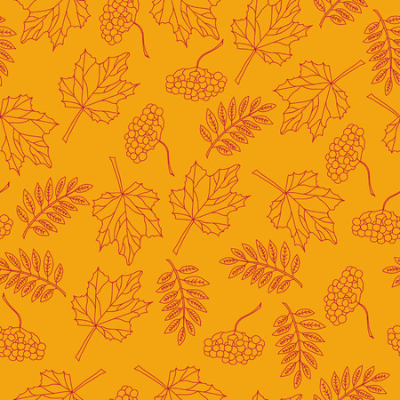 mountain ash:    the outline of autumn leaves of mountain ash on orange background pattern vector Illustration
