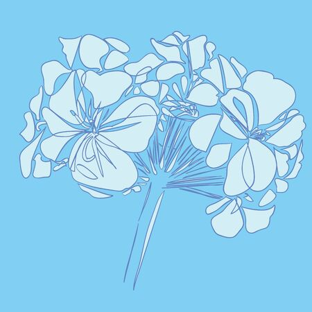 Abstract geranium flowers. Vector