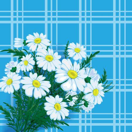 wild flowers: Some white wild flowers, vector flowers.
