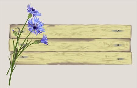 wooden planks: Illustration, banner, background with cornflowers on wooden planks.