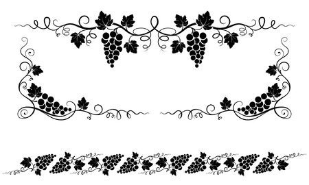 grape vines: Decorative elements, corners with bunches of grape, grape leaves.