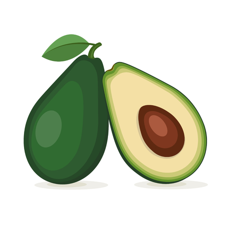 Fruit of avocado tree, the whole one and in a cut. Elements in groups. Çizim
