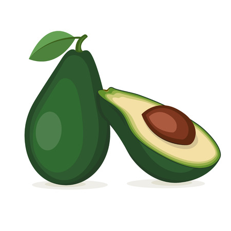 Fruit of avocado tree, the whole one and in a cut. Elements in groups. Illustration