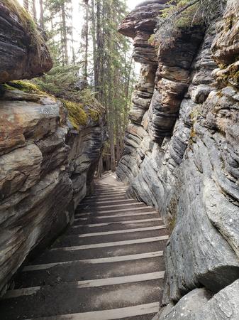 Alberta, Canada. Jasper National Park, May, 2019. Athabasca River and Fall. Foto de archivo - 127679714