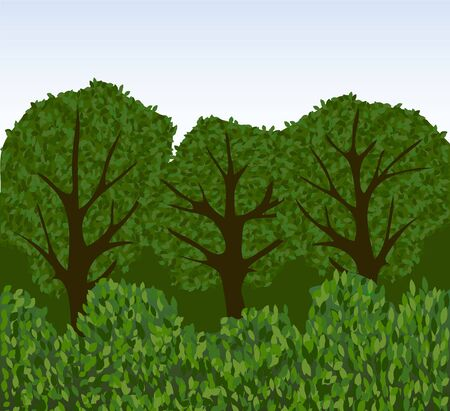 trailway: Forest or park with trees and bushes Illustration