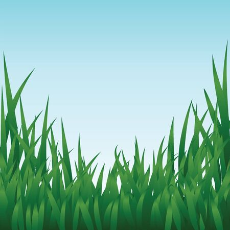 Green grass and blue sky Stock Vector - 17746203