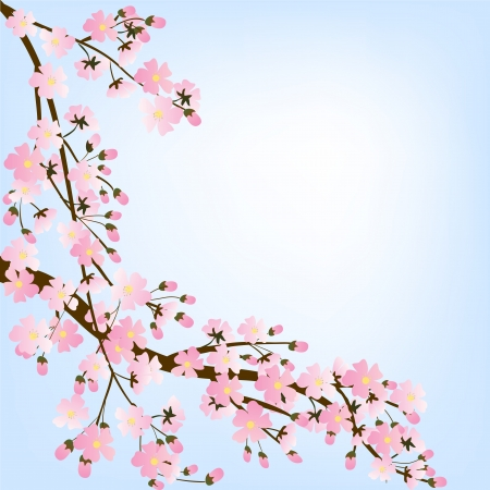 Spring background with blooming tree brunch Vector