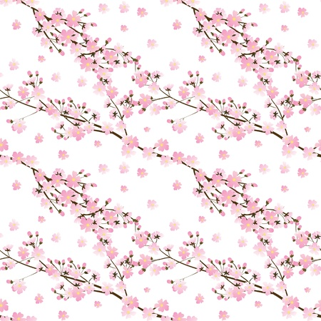 cherry blossoms: Spring seamless background Illustration
