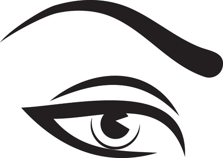 Beautiful woman eye and brow Vector