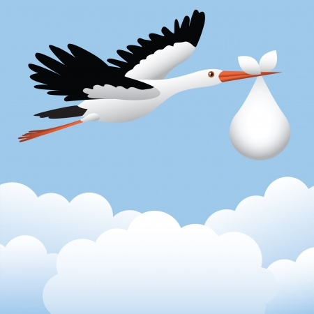 stork flying with bundle: Flying stork with baby