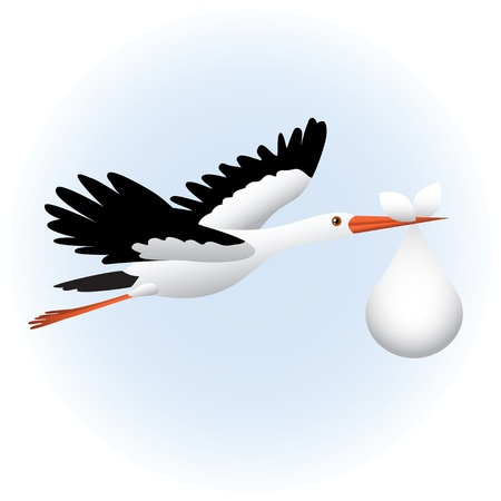 cigue�a: Volar cig? con beb?