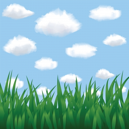 Green grass, blue sky and clouds in summertime Stock Vector - 19907767