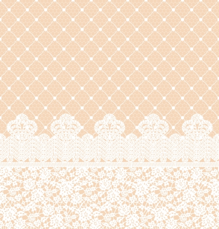 tissue texture: Wedding invitation or greeting card with lace border