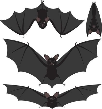 fruit bat: Cartoon style set of spooky Halloween bats