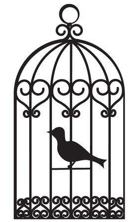 jail bird: Vintage beautiful bird cage with bird inside