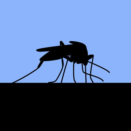 Blue background with black silhouette of biting mosquito Vector