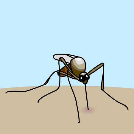 aedes: Hand drawn cartoon illustration of mosquito bite