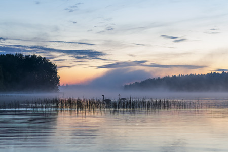 Sunset and fog over a lake in Finland Standard-Bild