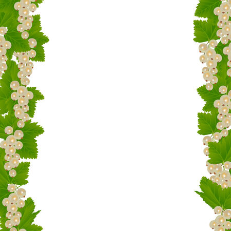 currants: White currants border with leaves isolated on white background Illustration