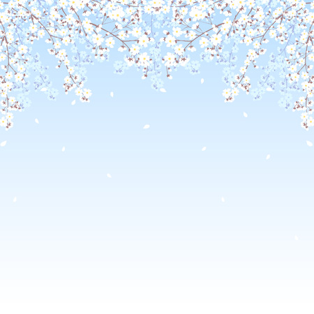 Spring background with blooming tree branches frame