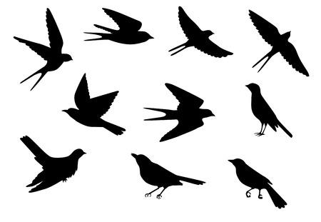 golondrinas: Conjunto de siluetas de vuelo y pájaros posados