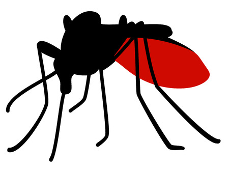malaria: Silhouette of biting mosquito full of blood